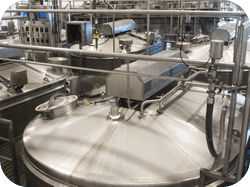 EFFECTIVE SOLUTIONS IN FOOD SAFETY